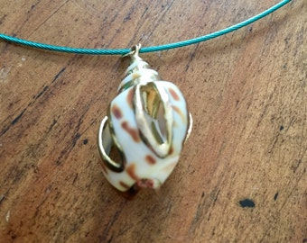 WHITE TIGER SEASHELL necklace