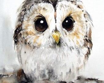 Summer Sale-Owl Art Original Watercolor Painting 12x10.5in