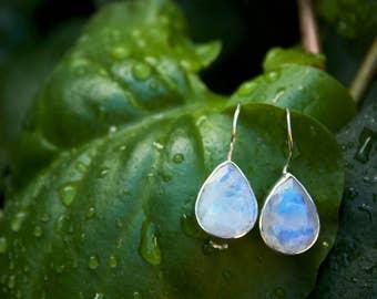Simple Elegant Faceted Rainbow Moonstone Hook Earrings in Teardrop Sterling Silver Setting