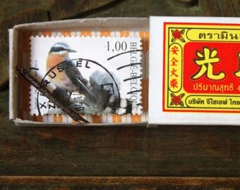 Bird illustrated postage stamp in a vintage matchbox diorama • One of a kind artwork made by hand in France • Tiny Bird #8