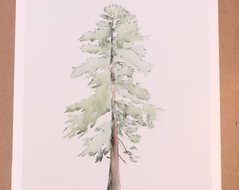 "Limited Edition 8""x10"" Giclee Print of Loblolly Pine Original Watercolor and Ink on Canvas Painting"