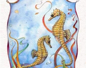 Seahorse. 4 card Set.