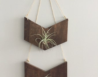 Chevron Air Plant Wall Art