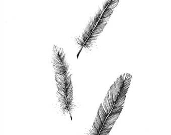 Feather Ink Drawing Print