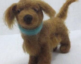 dog turquoise tie