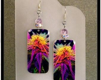 Rainbow Cannabis Plant Photo Charm and Amethyst Earrings