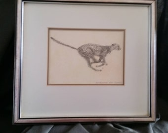 Original Pencil and ink sketch Rob Holcombe 1979