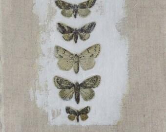 Natural history small original textile art /applique. Fabric, butterflies, paint, embroidery. Black, white, monochrome, neutral