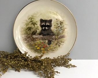 Baby raccoon decorative plate - vintage Pickard Bradex collectible by Joseph Giordano - 1980s vintage