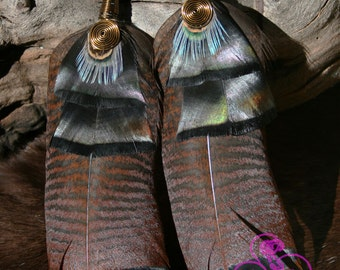 Wild eastern Turkey and Pheasant Feather Earrings