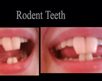 Rabbit/Rodent teeth (Custom made from scratch)