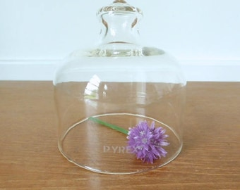 Pyrex brand glass dome, glass cloche