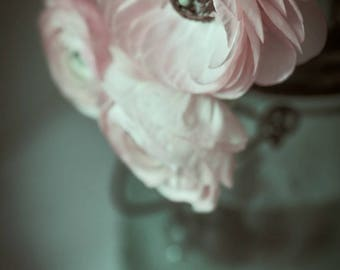 "Pink Flower Print - pastel pink ranunculus flower 8x10 photo rustic wall art 11x14 bedroom wall art 16x20 still life 5x7 - ""Don't Forget Me"""