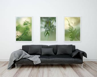 Botanical Prints Set, Nature Photography Set of 3 Prints, Green Monochrome Prints Collection, Green Wall Art Set, Botanical Wall Display