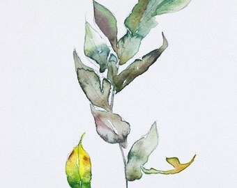 autumn leaf study . original watercolor painting