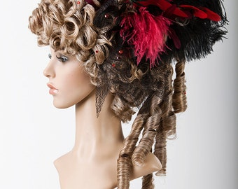 Wig historical Lady wig Gothic DarkRomantic Carnival Rococo Baroque wig with feather headdress