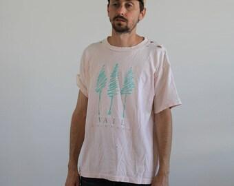 Pastel Distressed Vail Shirt Medium