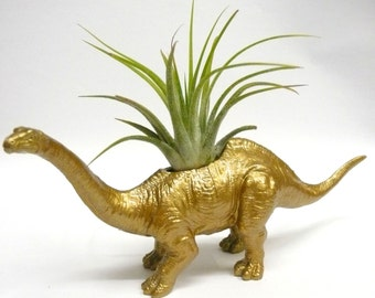 Gold Apatosaurus Dinosaur Planter with Air Plant // Coworker Gift // For Her // For Him