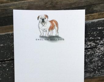 English Bulldog Note Card Set