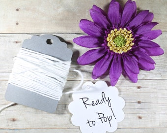 Ready to Pop Tags 20pc - Baby Sprinkle Gift Tags - Baby Shower Favor Tags - Neutral Baby Shower Labels - Popcorn Favors