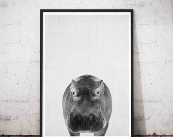 Hippo Poster, Hippopotamus Art, Printable African Safari Nursery Animal Wall Art Print, Hippopotamus Gift For Her, Animal Nursery Decor