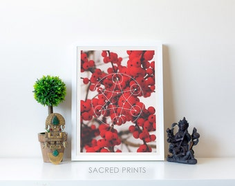Winter Berry Digital Print, Sacred Glyph, A1 Printable Symbols, Instant A2 Symbols, Snowy Fruit Poster, Red Fruit Photo, Interesting Gifts