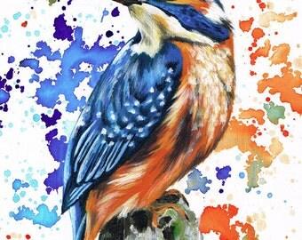 Proud Kingfisher Print