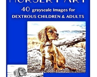 """PDF DOWNLOAD for CHILDREN & Grown Ups """"Color Your Own Nursery Art 35 grayscale Color or Paint book"""