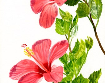 Light Red Hibiscus Tropical Flowers, Watercolor Floral, Original Painting Dark Pink, 11 x 17 inches