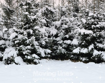 Winter Trees Backdrop, Christmas, Snow Baby Photography Background, Snowy Forest, Printable Digital Photo Shoot Prop