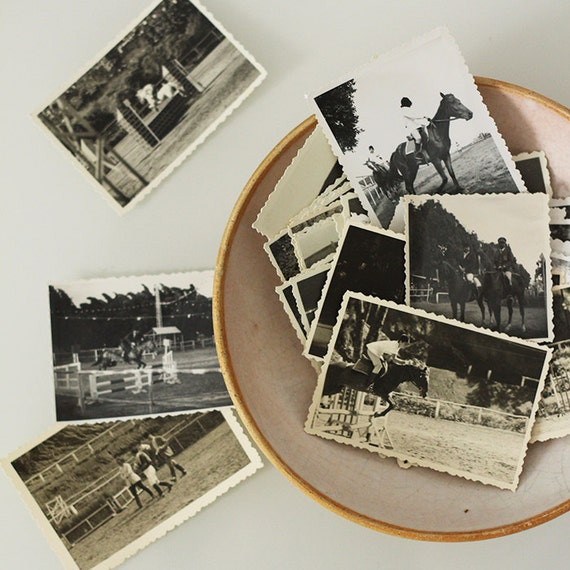 Vintage French Black & White Equestrian Photos - Set of 5
