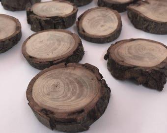 Wood Tree slices - Set of 10