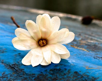 Blank Greeting Card, Original Photography, White Flower on Blue Boat, Nature Print