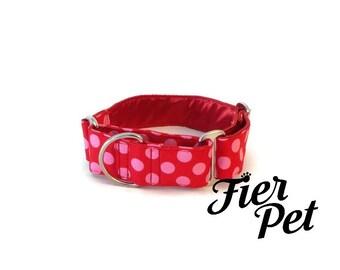 martingale collar, dog martinguale collar, pick ,retro ,ta dot ,fierpet,whippet collar, greyhound collar
