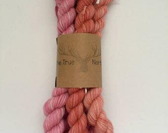 Pink Variegated Mini Skein Set - Hand Dyed Yarn - 100% Worsted Weight Wool