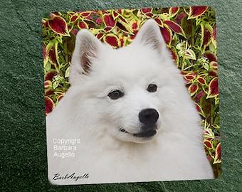 American Eskimo Dog Coasters, American Eskimo Dog Gift, American Eskimo Dog Art Tiles, American Eskimo Dog