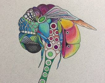 Zentangle fly,fly art,insect art,colored fly,zentangle art,colored zentangle,wall art,wall decor