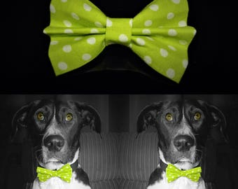 Spottygreen Dog Bow Tie - Green