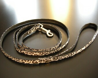 Leash for little dog or cat