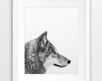 Wolf Print, Grey Wolf Wall Art, Wolf Photo Black & White, Woodlands Animal, Animal Photography, Nursery Wall Decor, Kids Room Printable Art