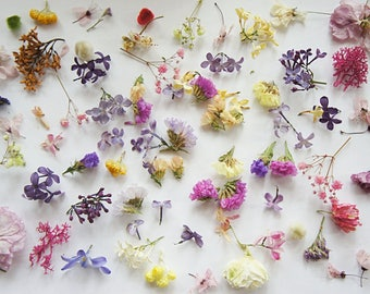 Dried mini flower for resin jewelry, mixed flower for glass orb-glass vial filter, dried mixed mini flowers, set of mix flowers for craft