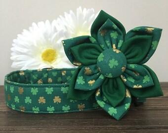 Dog collar, St patricks day dog collar, shamrock dog collar, gold and green dog collar, dog flower, collar flower, holiday collar, flower