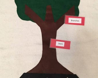 Parts of a Plant/Tree Work Montessori Science Work Nature activity