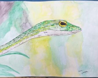 """Dessin Peinture aquarelle sur papier par G.Vanspey format A4 animal sauvage """"serpent"""""""