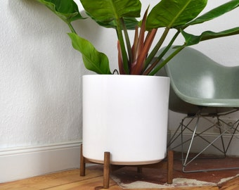 XXL Low Mid Century Planter Architecture Pottery Plant Stand Blumentopf Walnut