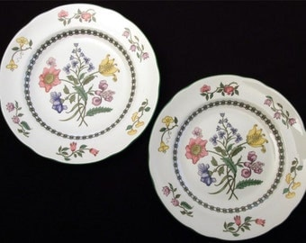 Spode Summer Palace.  2 Salad Plates.  7 1/2-inches.  S3588-Y and S3588-AO