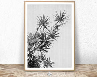 Wall Art, Black and White, Large Photography Poster Print, Modern Beach Decor, Printable Digital Download, Lila and Lola, Minimalist Minimal