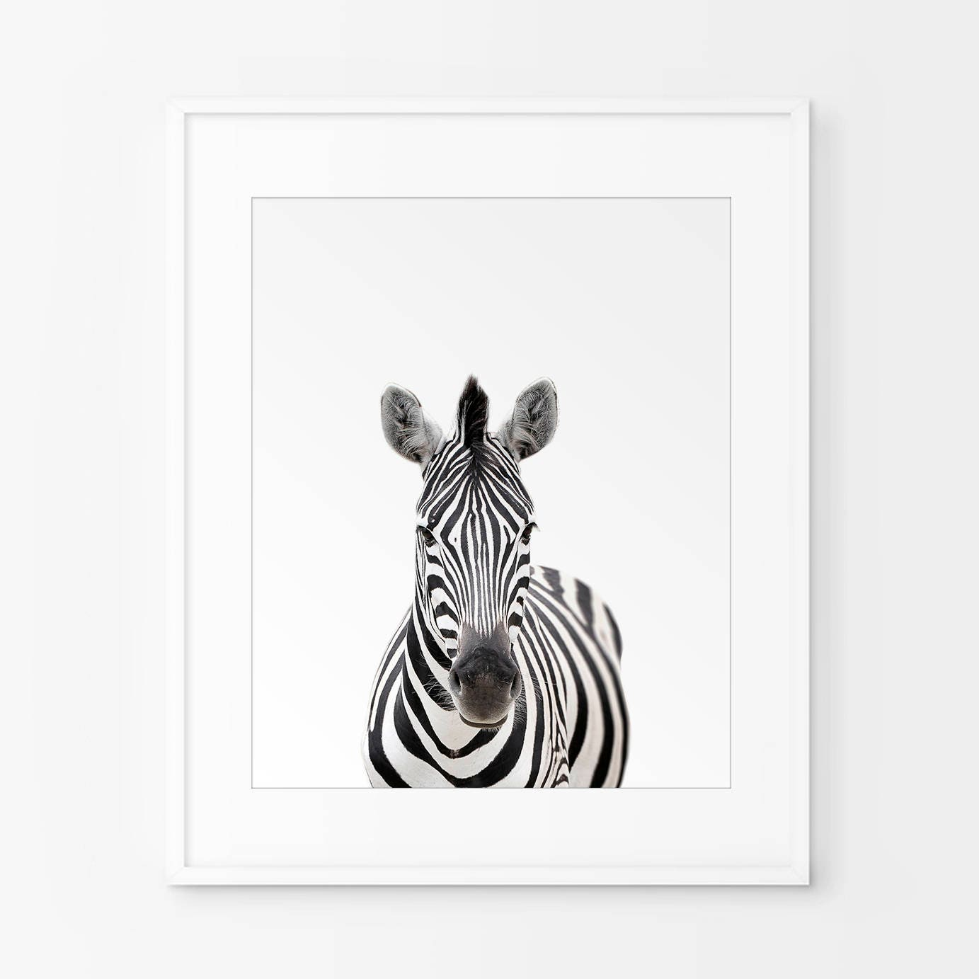 Zebra Print Nursery Animal Wall Art Black And White Nursery