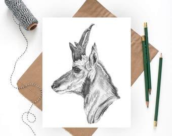 Zoo Art, Zoo Nursery Art, Safari Art, Zoo Animals, Zoo Print, Kids Animal Art, Zoo Nursery Decor, Safari Nursery Print, Zoo Nursery Print