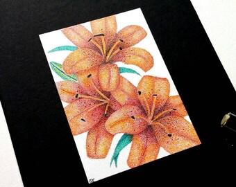 Tiger Lilies - Original ACEO Miniature Botanical Floral Pointillism Drawing
